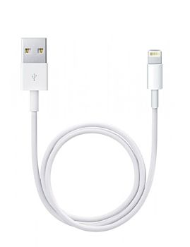 Lightining To USB Cable 0.5M (ME291ZM/A)