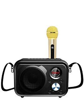 SDRD High Quality Speaker With One Mic Black