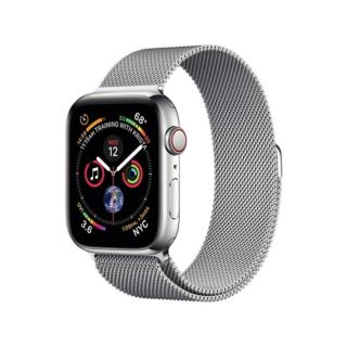 Coteetcl Magnet Band For iWatch 42/44mm - Silver (WH5203-TS)