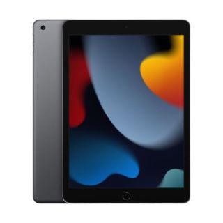 iPad 9 (2021) 256GB 4G - Gray (MK4E3)